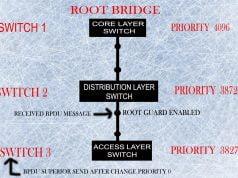 stp loop protection